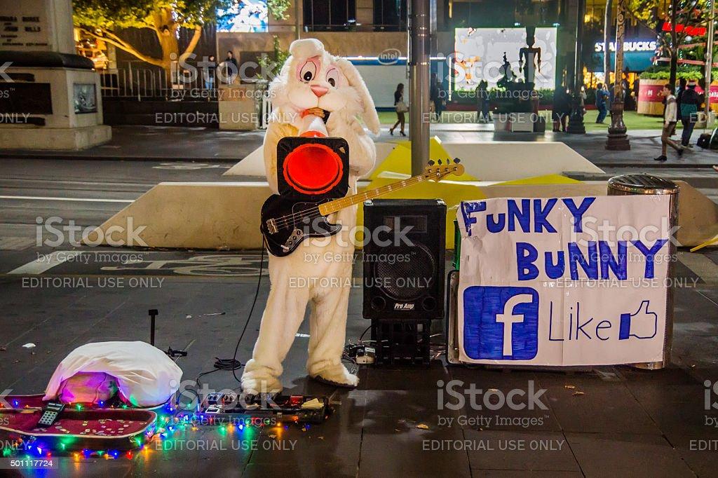 Funky Bunny stock photo
