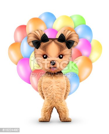 815229514 istock photo Funny animal keep a bunch of balloons 815224492