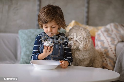 Cute Boy Sharing His Cookie With His Pet, Adorable Fluffy Poodle Dog