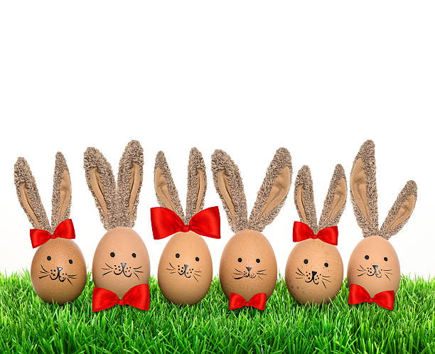 Funny bunnies easter eggs with big ears in green grass stock photo