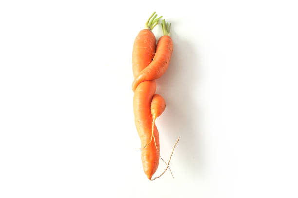 funny carrots on white background - disfigure stock pictures, royalty-free photos & images