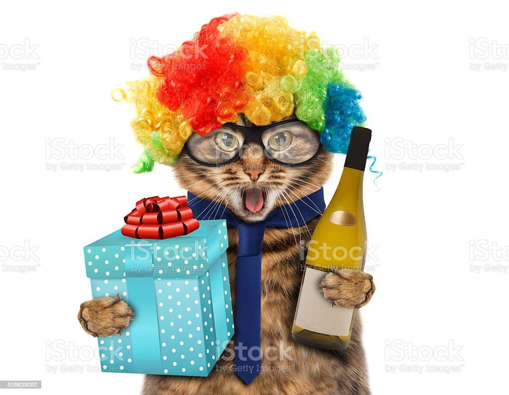 En costume de clown drôle chat. - Photo