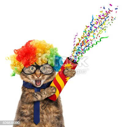 istock Funny cat in costume clown. 526835090