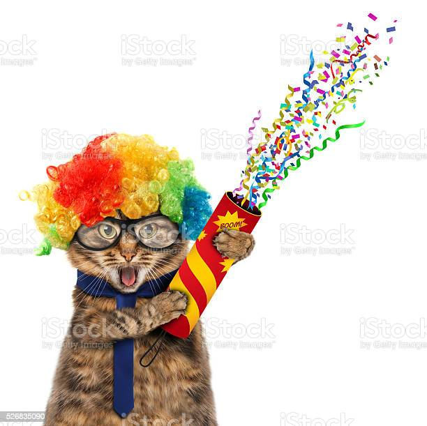 Funny cat in costume clown picture id526835090?b=1&k=6&m=526835090&s=612x612&h=dcyeef yk gn9tbh7ff2ksocgijpkl7jzw3kvpz9eu8=