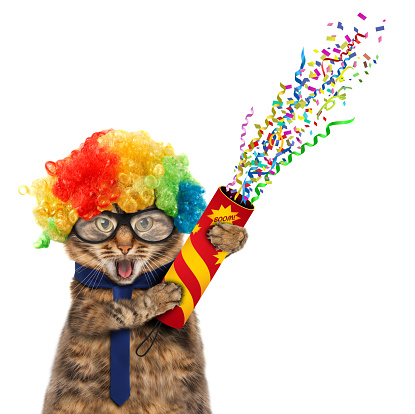 Photo libre de droit de En Costume De Clown Drôle Chat banque d'images et plus d'images libres de droit de Affiche