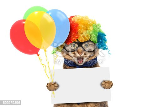 istock Funny cat is wearing a clown's costume and holding balloons. White label for text. 655575396