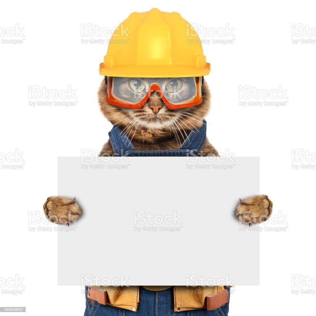 Lustige Katze Tragt Einen Anzug Des Generators Handwerker Auf Dem