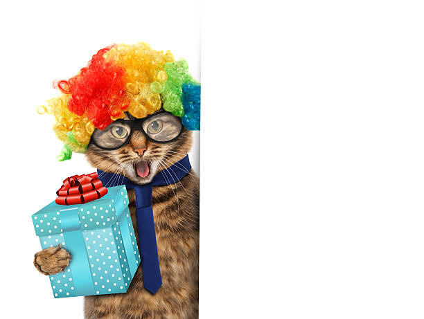 Funny cat is wearing a suit of clown picture id526292730?b=1&k=6&m=526292730&s=612x612&w=0&h=g6pyodldejkqclq42255btu7p6fspxmyiod9mauluaw=