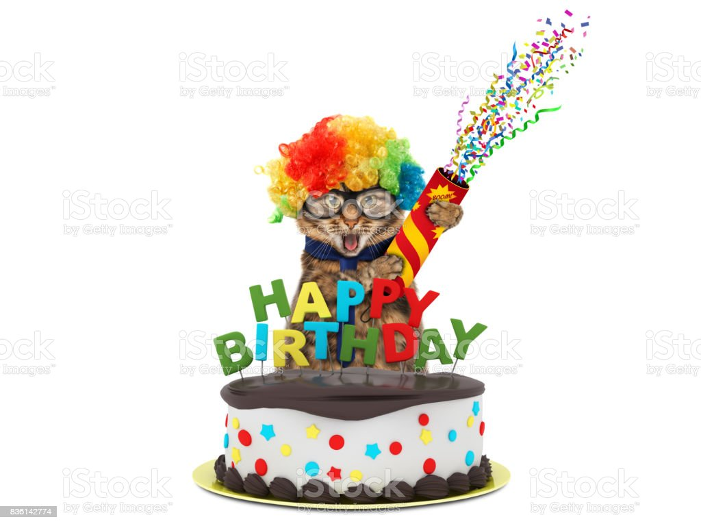Cool Funny Cat With Happy Birthday Cake Wearing A Party Hat Isolated On Funny Birthday Cards Online Alyptdamsfinfo