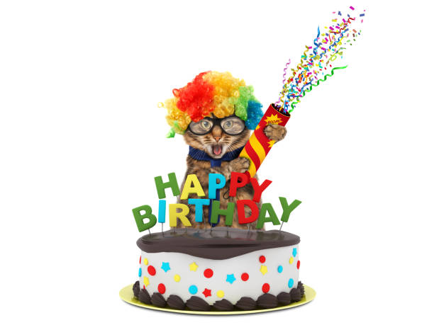 Funny cat with happy birthday cake wearing a party hat isolated on picture id836142774?b=1&k=6&m=836142774&s=612x612&w=0&h=j1dgidk 50wqe3ulj3bbs6dvv8yvnmauv fetni2eai=