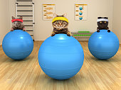 Funny cats are doing exercise with stability ball. Fitness club.