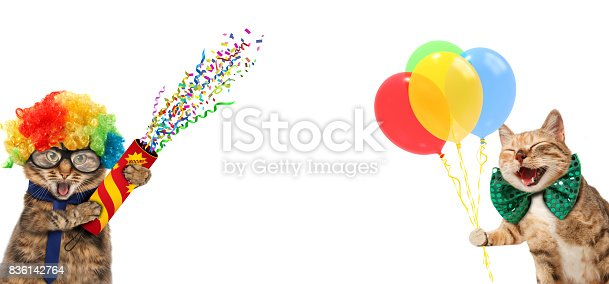 istock Funny cats are wearing clown's costume and holding balloons and petard. White label for text. 836142764