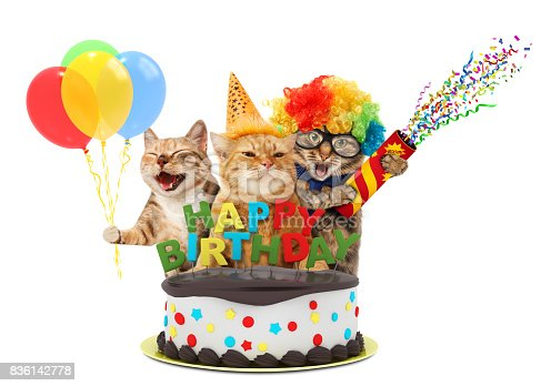 istock Funny cats with petard and birthday cake. They are wearing festive clothes, isolated on white background. 836142778