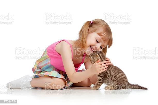 Funny child playing with scottish kitten picture id177314234?b=1&k=6&m=177314234&s=612x612&h=lemy c9v8hiho2zqkltgyfkt 57kjcep4yar86jl2t0=