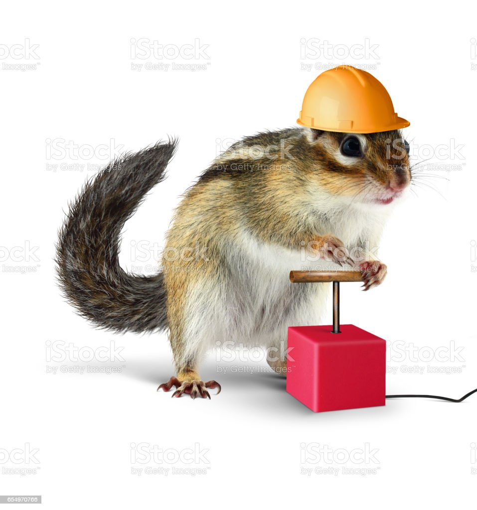 Funny chipmunk with detonator isolated on white background stock photo