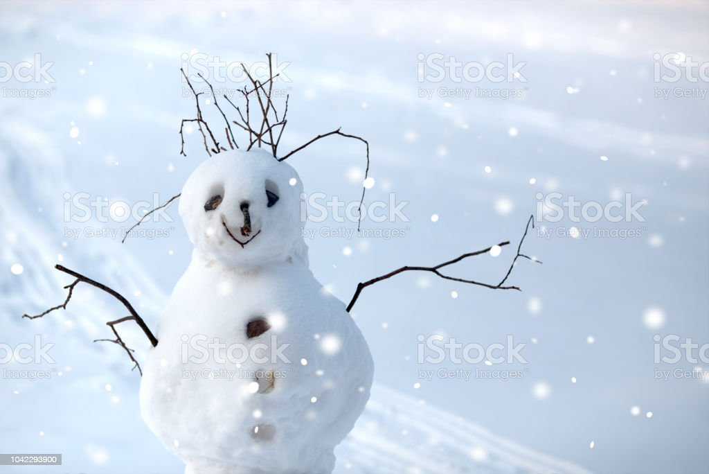 Funny Christmas Snowman On The Background Of Snowy Landscape Stock Photo Download Image Now