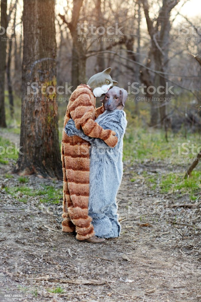Funny couple in love wearing cat and dog costumes stock photo