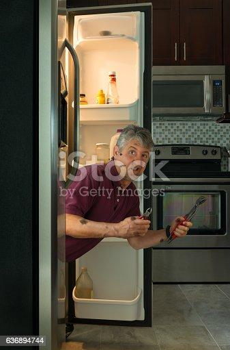 istock Funny dirty appliance repair homeowner man in refrigerator 636894744