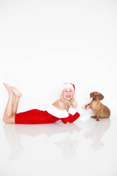 lustiger hund pfötchen geben, lächelnde frau in nikolausmütze - frohes neues jahr stock-fotos und bilder