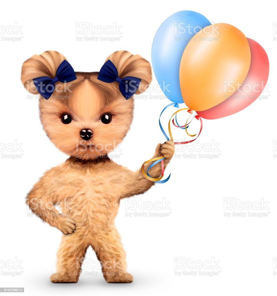Funny dog holding colorful balloons stock photo