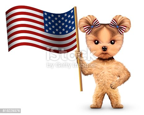 489224301 istock photo Funny dog holding USA flag. Concept of 4th of July 815229376