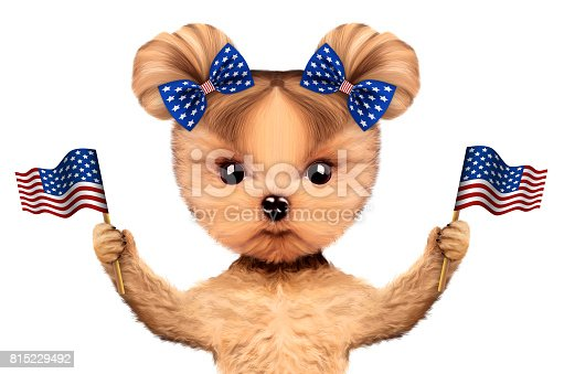 489224301 istock photo Funny dog holding USA flag. Concept of 4th of July 815229492