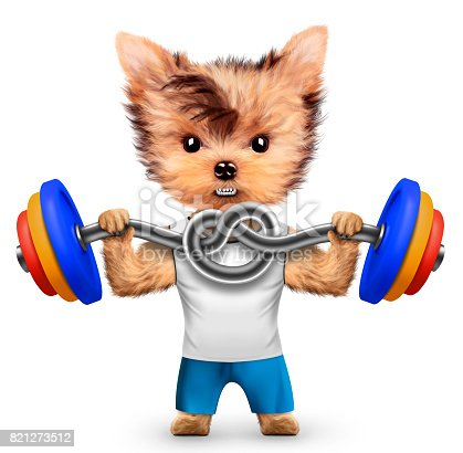 Funny dog training with barbell in sport gym. Concept of sport and fitness. Realistic 3D illustration.