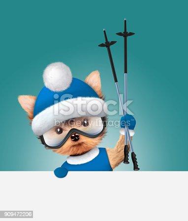 istock Funny Dog wearing ski goggles. Christmas concept 909472206
