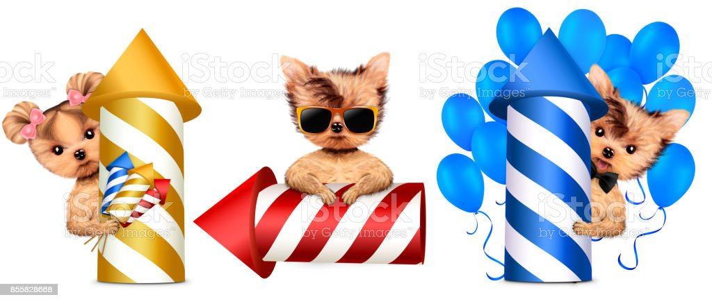 Funny dogs holding fireworks rocket and balloons stock photo