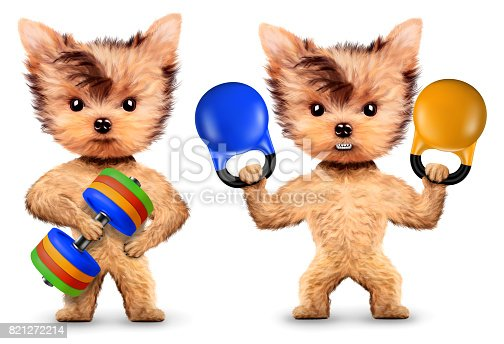 Funny dogs training with barbell and dumbbell. Concept of sport and fitness. Realistic 3D illustration.
