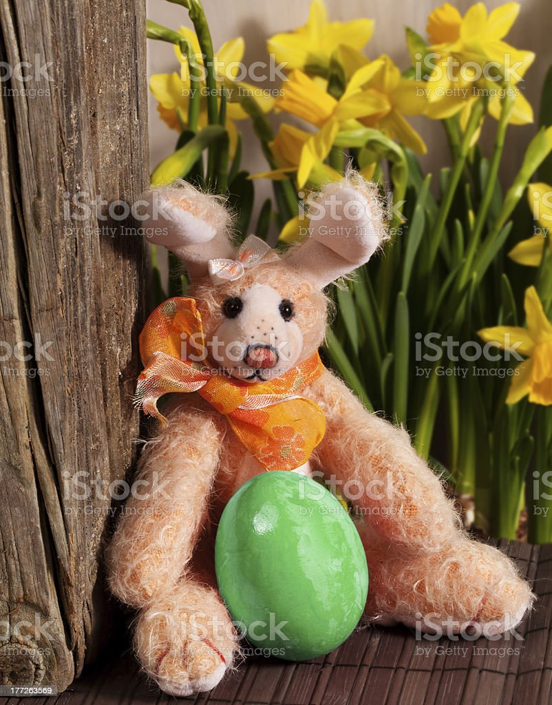 Funny Easter Bunny royalty-free stock photo