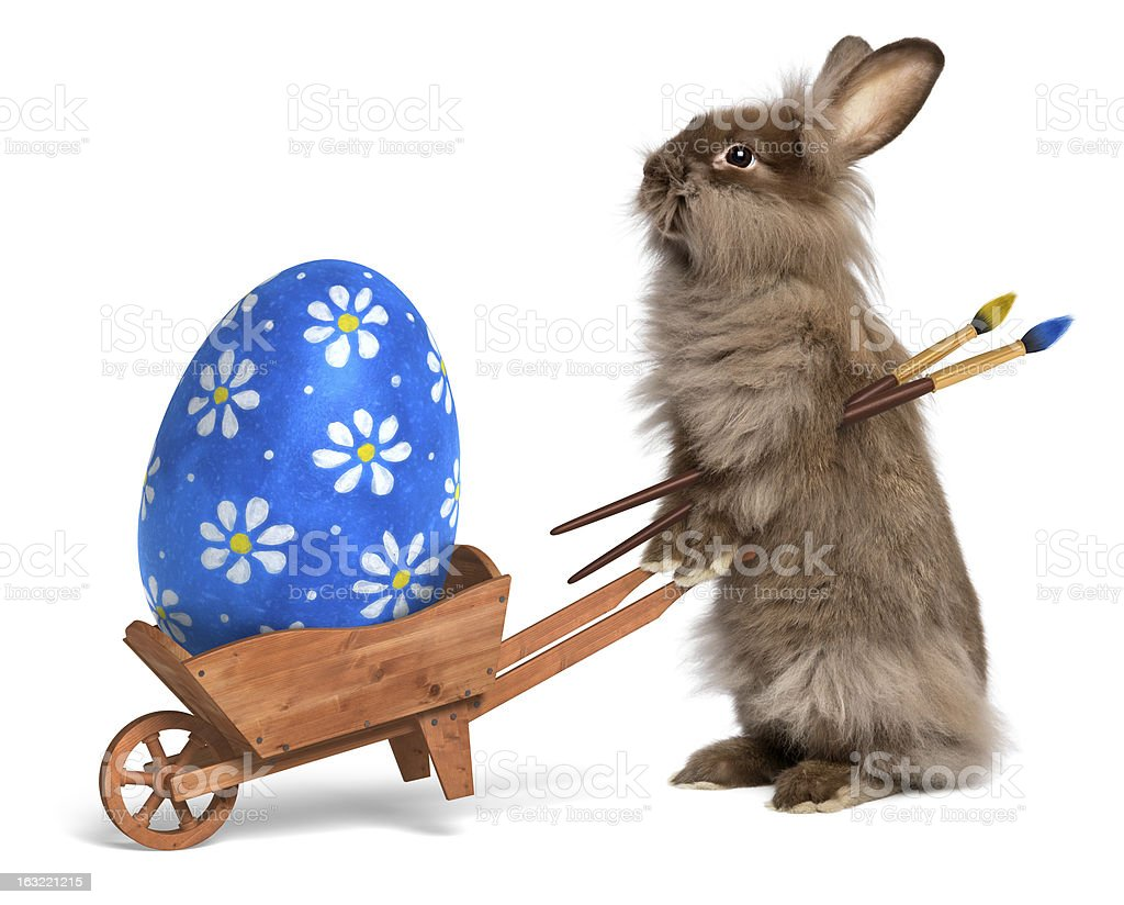 Funny Easter bunny rabbit with a wheelbarrow and painted egg royalty-free stock photo