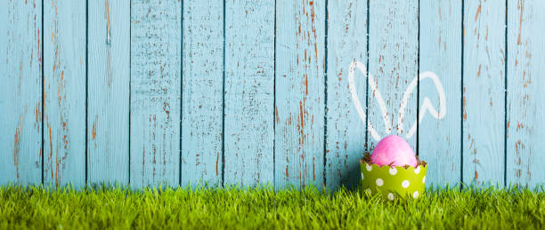 funny easter egg in cake pan - rabbit ears humor - easter bunny stock photos and pictures