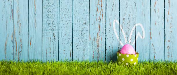 ovo de páscoa engraçada no bolo pan - humor de orelhas de coelho - pascoa - fotografias e filmes do acervo