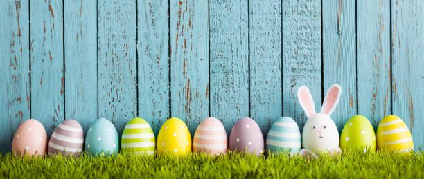 funny easter egg rabbit on grass - easter bunny stock photos and pictures