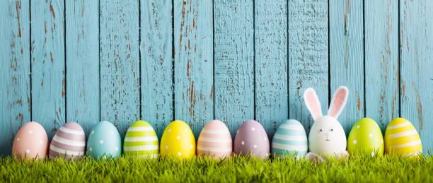 coelho de páscoa ovo engraçado na grama - pascoa - fotografias e filmes do acervo