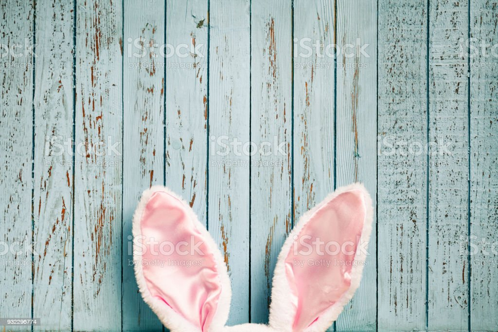 Funny Easter rabbit ears on old blue wood - Cute Background stock photo