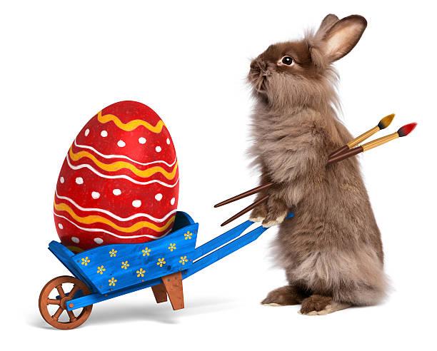 funny easter rabbit mit einer schubkarre und eine rote eier blau - schöne osterbilder stock-fotos und bilder