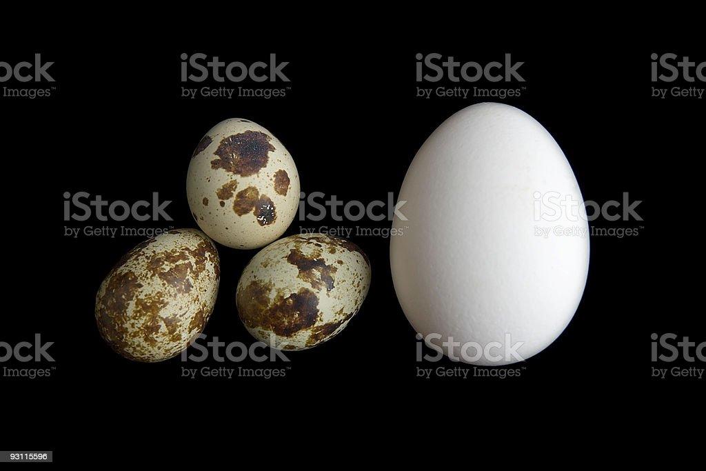 funny eggs royalty-free stock photo