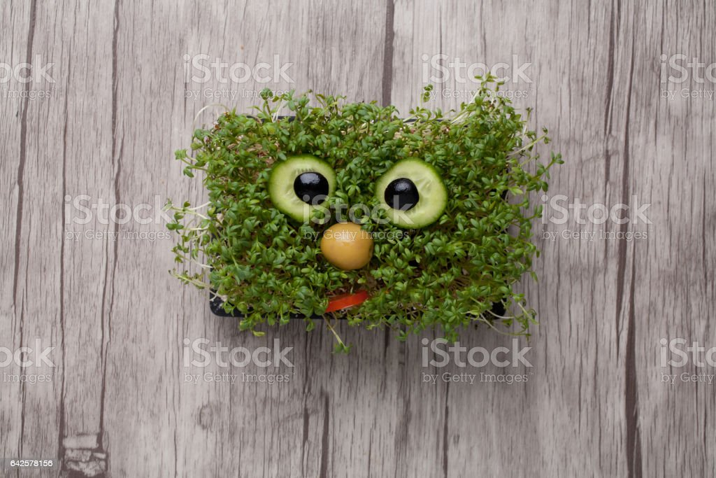 Funny face made of crest salad on wooden board stock photo