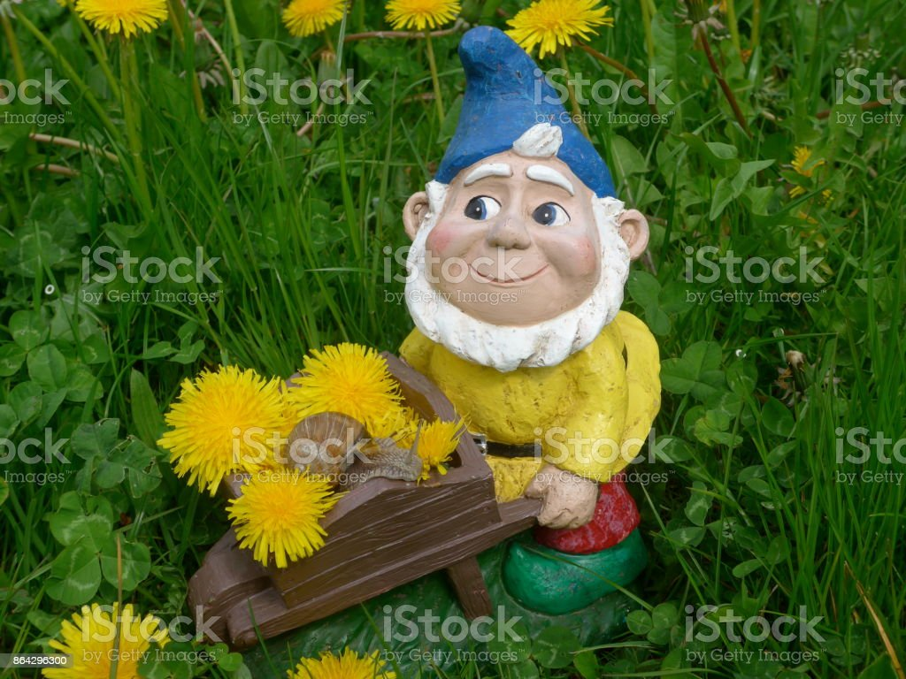 Funny garden dwarf on a green meadow with flowers royalty-free stock photo