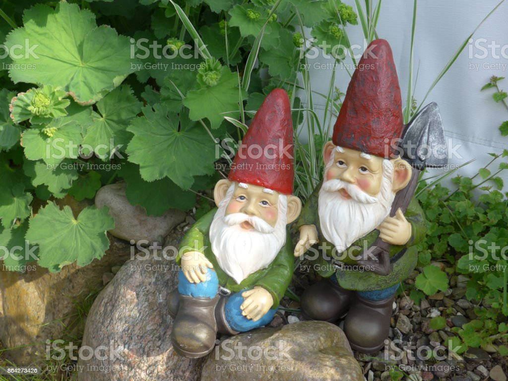 Funny Garden Gnome during gardening royalty-free stock photo
