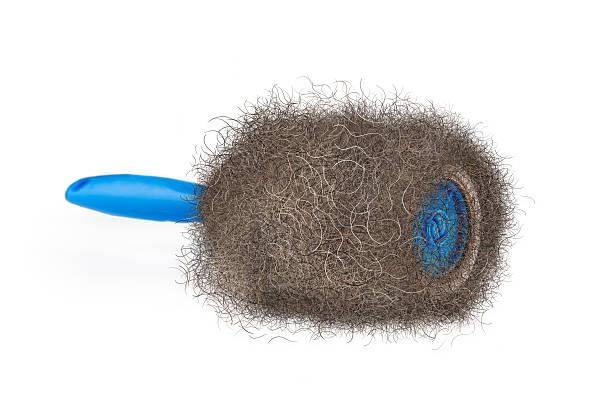 funny hairy lint roller illustration - entfernen von tierhaaren stock-fotos und bilder
