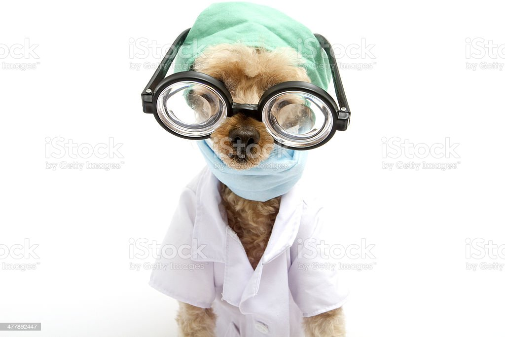 Funny Looking Doctor royalty-free stock photo