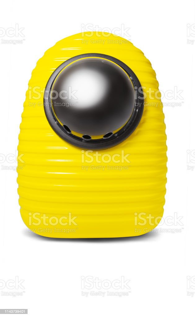 Funny pet yellow carrying backpack isolated on white stock photo