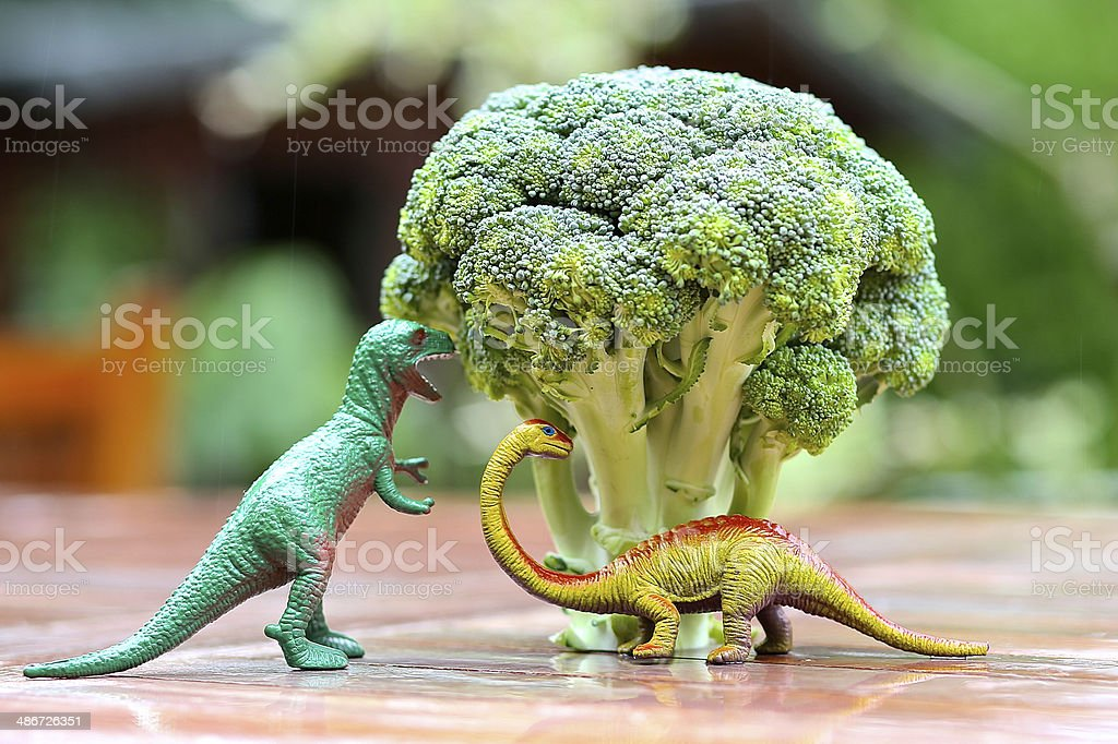 Funny picture of toy dinosaur eating broccoli tree. Photo can be used...
