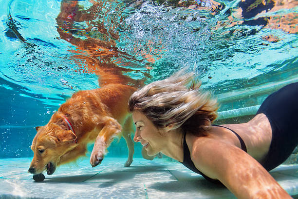 Funny portrait of smiley woman with dog in swimming pool picture id636042616?b=1&k=6&m=636042616&s=612x612&w=0&h=y hd9gxzbrexp6r z9iomd8fttam y2jqqgvmovn8es=