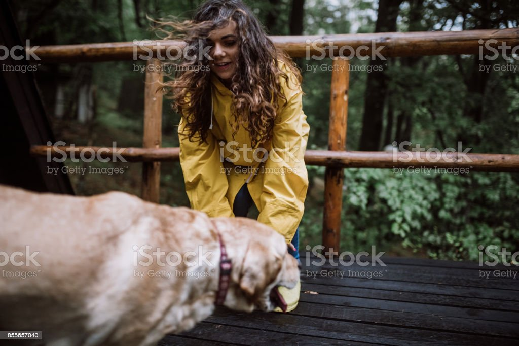 Funny Rainy Day With My Dog Stock Photo More Pictures Of 20 29