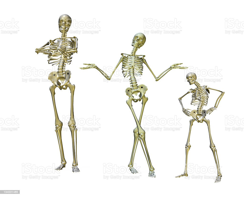 funny skeletons royalty-free stock photo