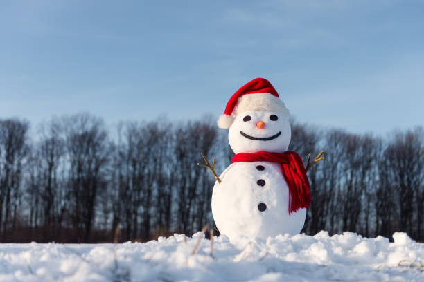 Funny snowman in red hat picture id1037480122?b=1&k=6&m=1037480122&s=612x612&w=0&h=wuamjm0njfbuefq x9zcyusg5tg9tt8t tzgtn0y si=